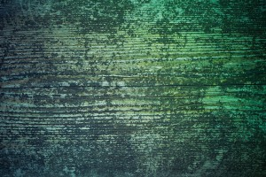 Free Blue Green Grunge Wood Texture